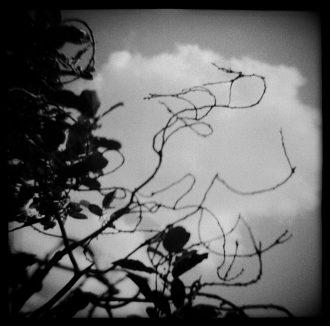 Christopher Lizon - Christopher Lizon - © photograph.